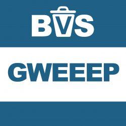 logo_bvs_app_GWEEEP